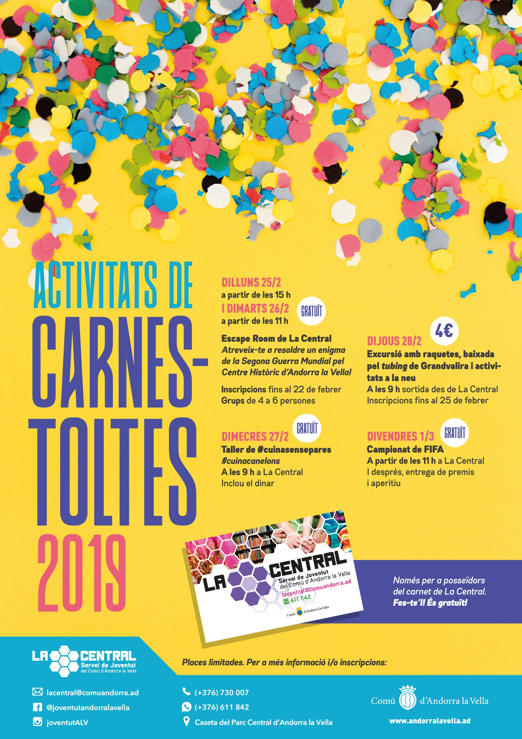 Cartell carnaval La Central 20019